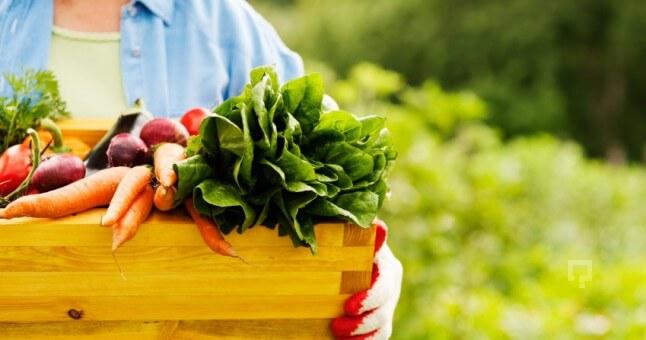 organik-tarım-organikciyizbiz (17)
