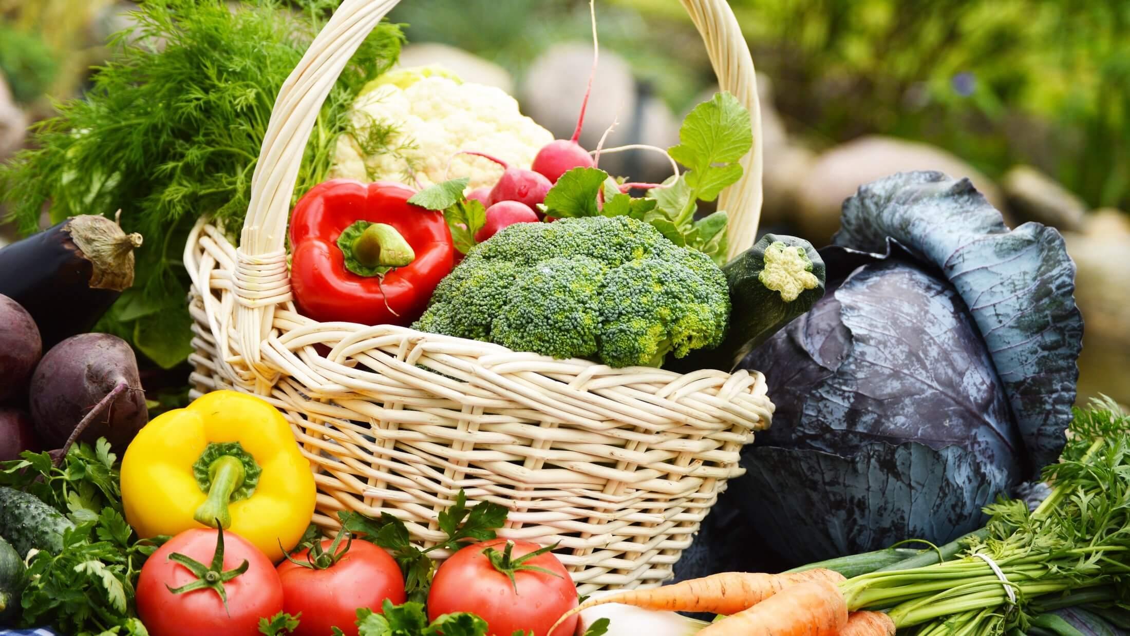 organik-tarım-organikciyizbiz (2)