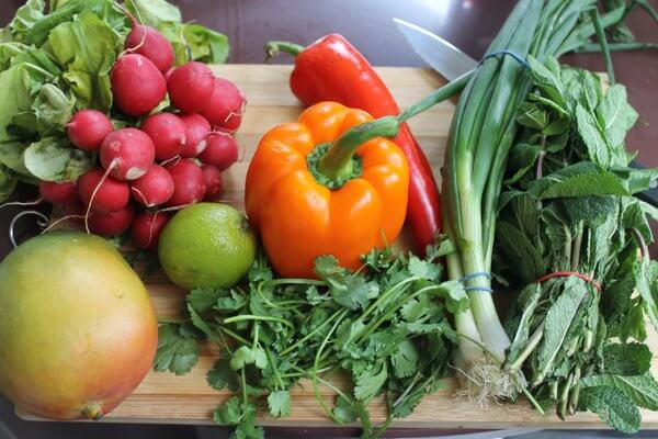 organik-tarım-organikciyizbiz (8)
