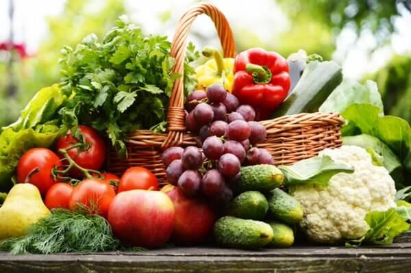 organik-tarım-organikciyizbiz (9)
