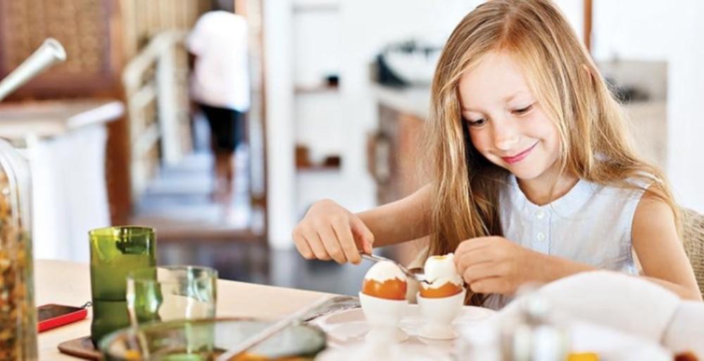 zeka geliştiren yiyecekler