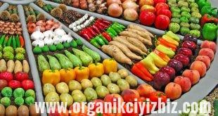 en faydalı sebzeler
