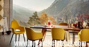 organik mobilya
