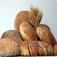 Organik Ekmekler
