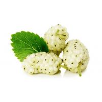 Organik Beyaz Dut (Dökme) - Organik Ufuklar