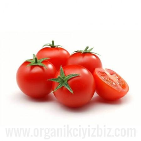 Organik Cherry Domates - Organik Ufuklar