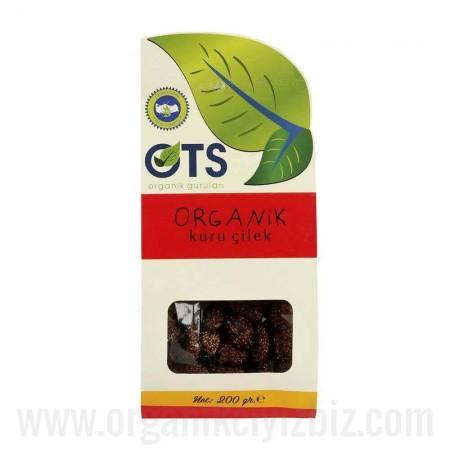 Organik Kuru Çilek 200g - OTS