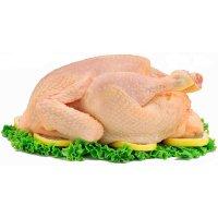 Organik Tavuk Eti-Yarım - Damii