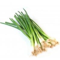 Organik Taze Soğan (Demet) - Organik Ufuklar