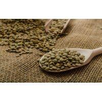 Organik Yeşil Mercimek (1kg) - Rasayana