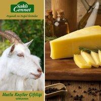 Doğal Keçi Eski Kaşar Peyniri 400gr - Saklı Cennet