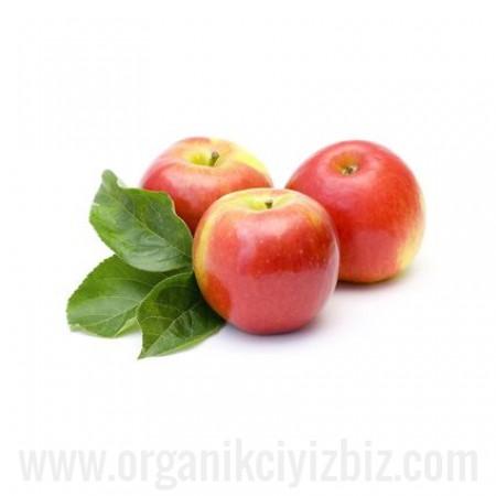 Organik Amasya Elması - Organik Ufuklar