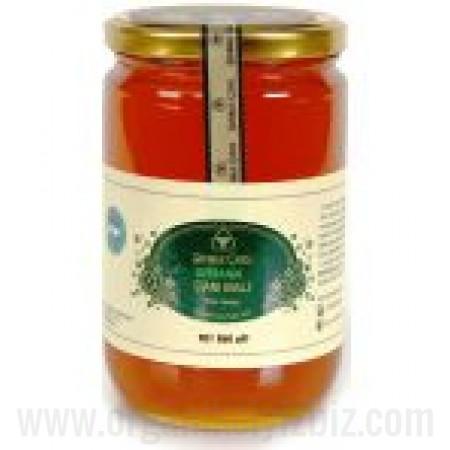 Organik Şahbaz Çaylı Çam Balı 450gr - Eğriçayır