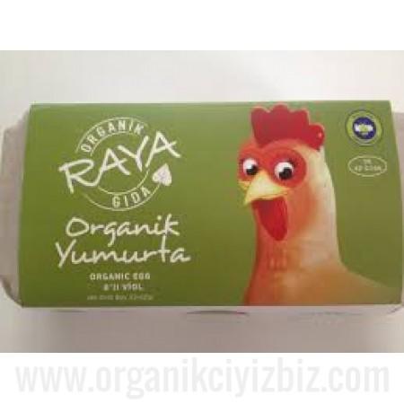 Organik Yumurta 8 Adet - Raya